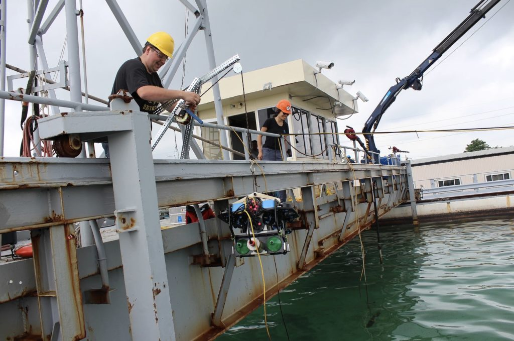 Scaling our Understanding of the Oceans with Affordable Marine Robotics