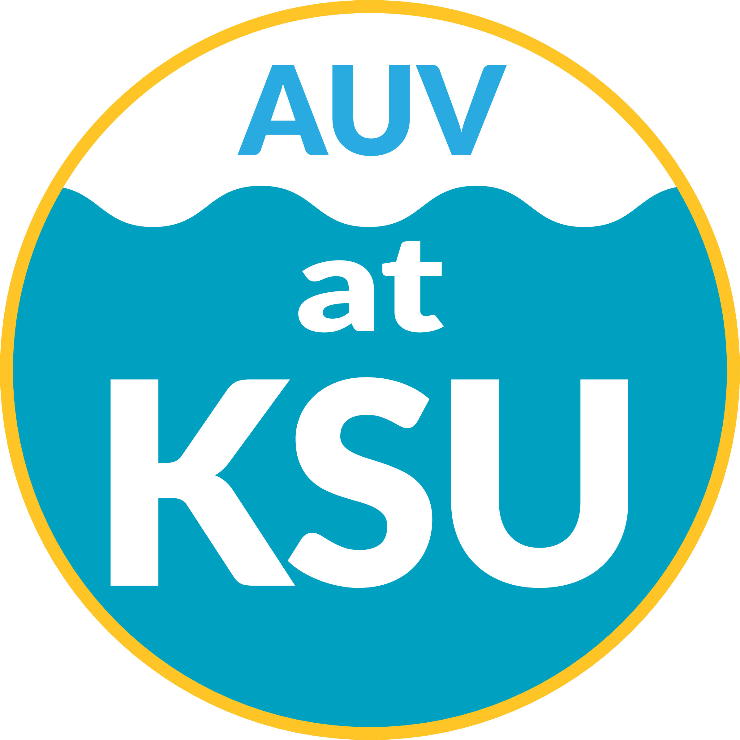 20 | Kennesaw State University